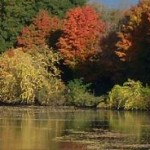 Erie Canal fall trees orange n yellow
