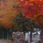 fall fairport trees in red yellow n green